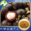 Purple Mangosteen Fruit Extract Powder